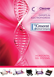 Horizontal Gel Systems
